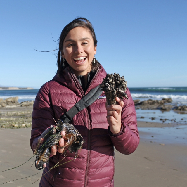 Woman on beach holding tidepool creatures