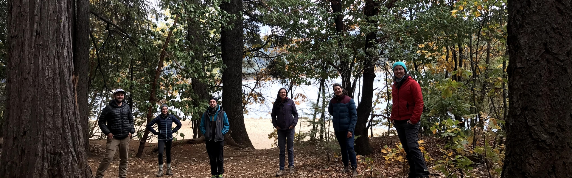 A group of 6 students stand in a clearing in the woods