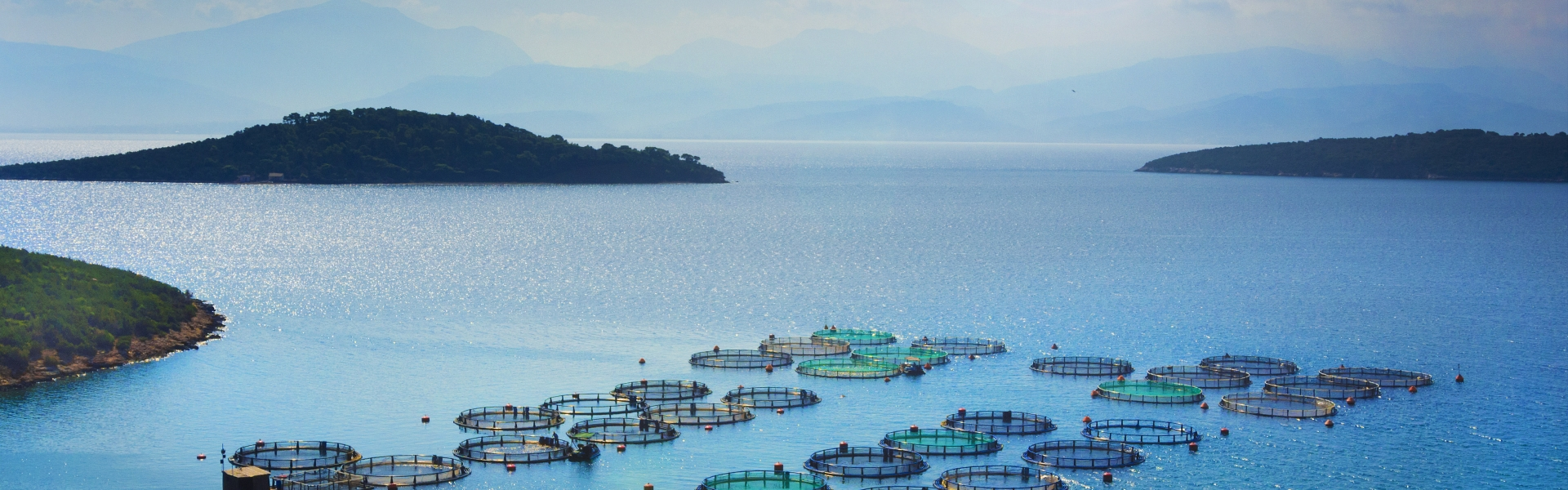 Aquaculture nets on a blue ocean