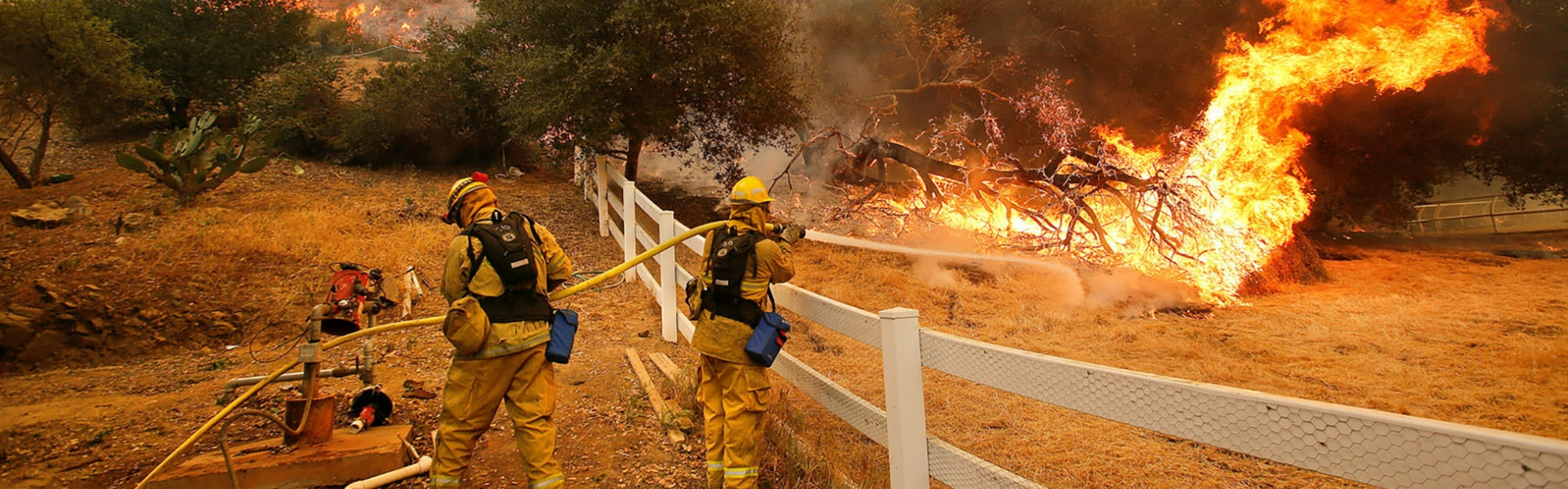 Firefighters combating wildfire perimeter with hoses