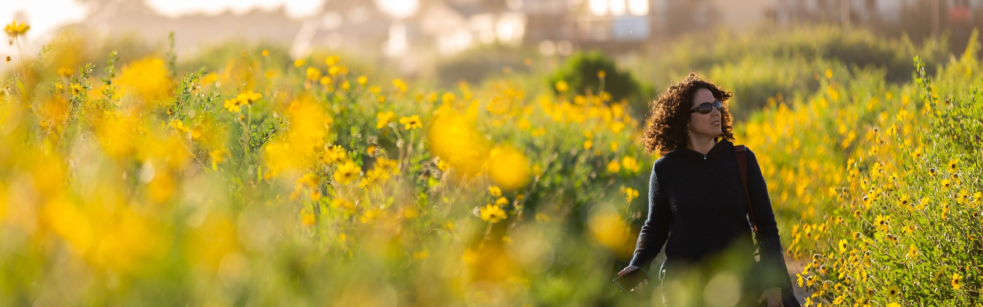 Woman walking on path surrounded by yellow flowers