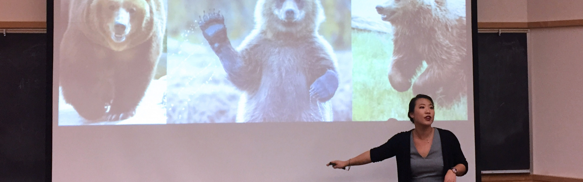 PhD student presents a slide of bears