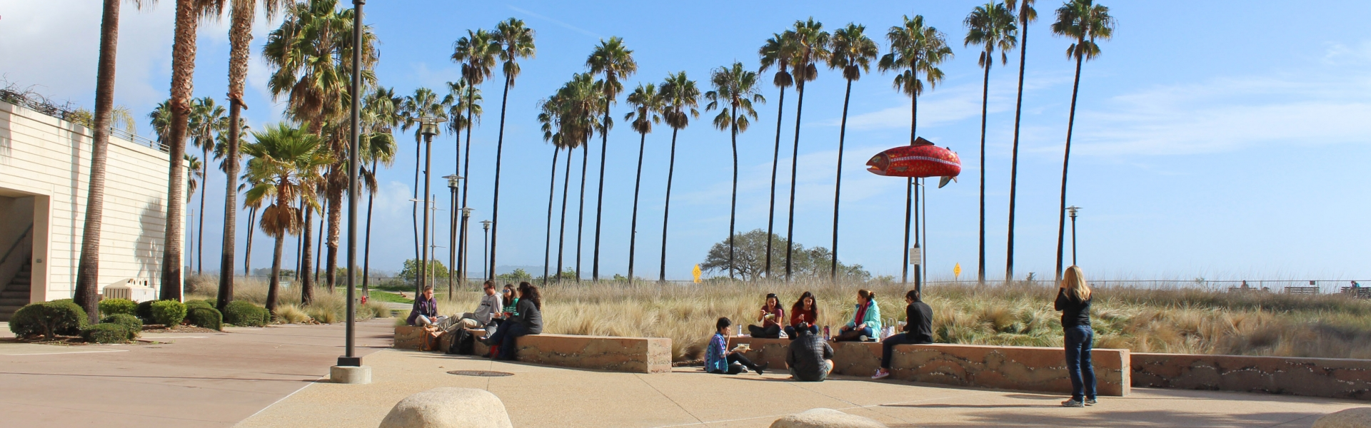 Wide view of a courtyard where students are sitting outdoors