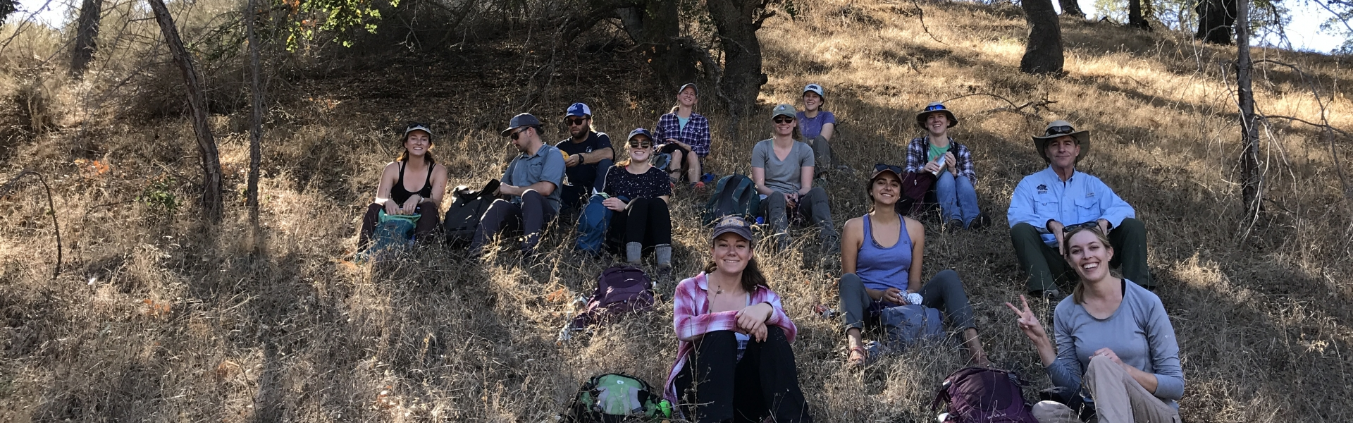 Students sitting in shade of oak trees