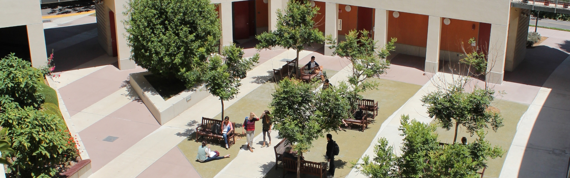 Courtyard exterior with trees