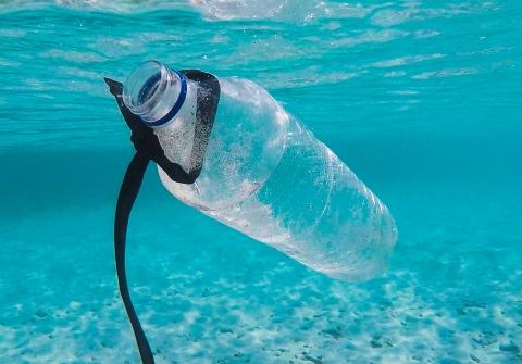 A plastic bottle floats underwater