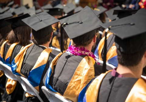 Graduates in cap and gown seen from behind at commencement