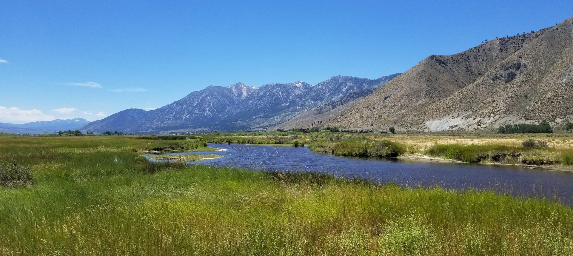 Eastern Sierra river, grass, and blue sky