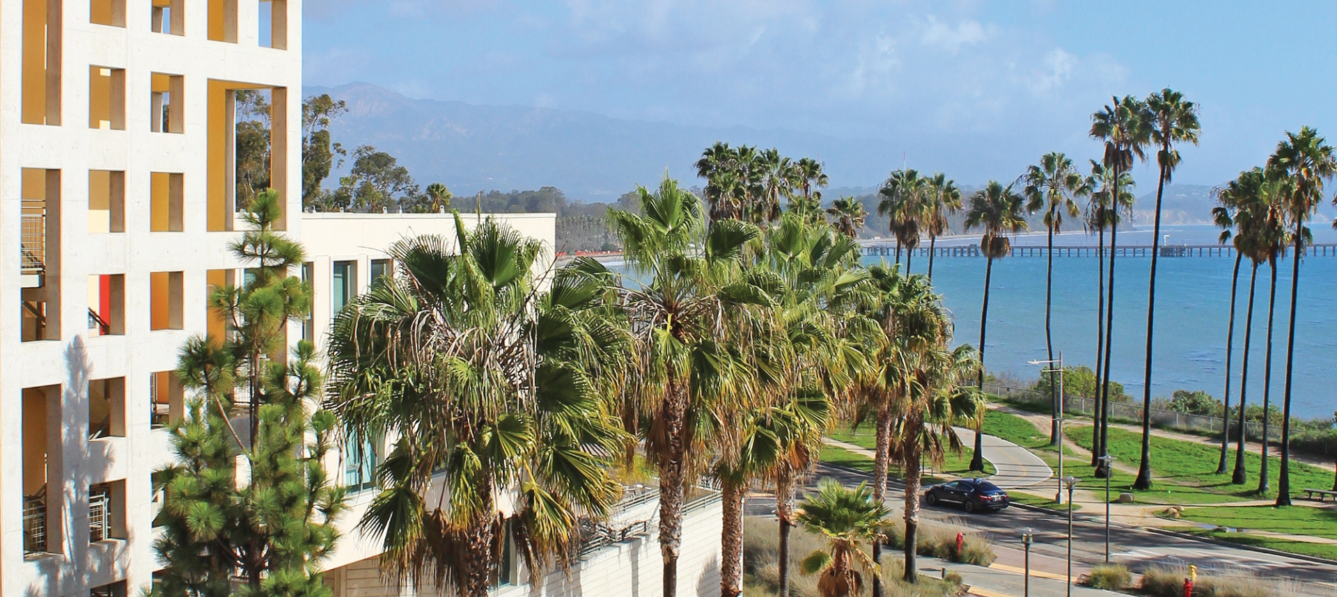 Campus building with palm trees and blue sky