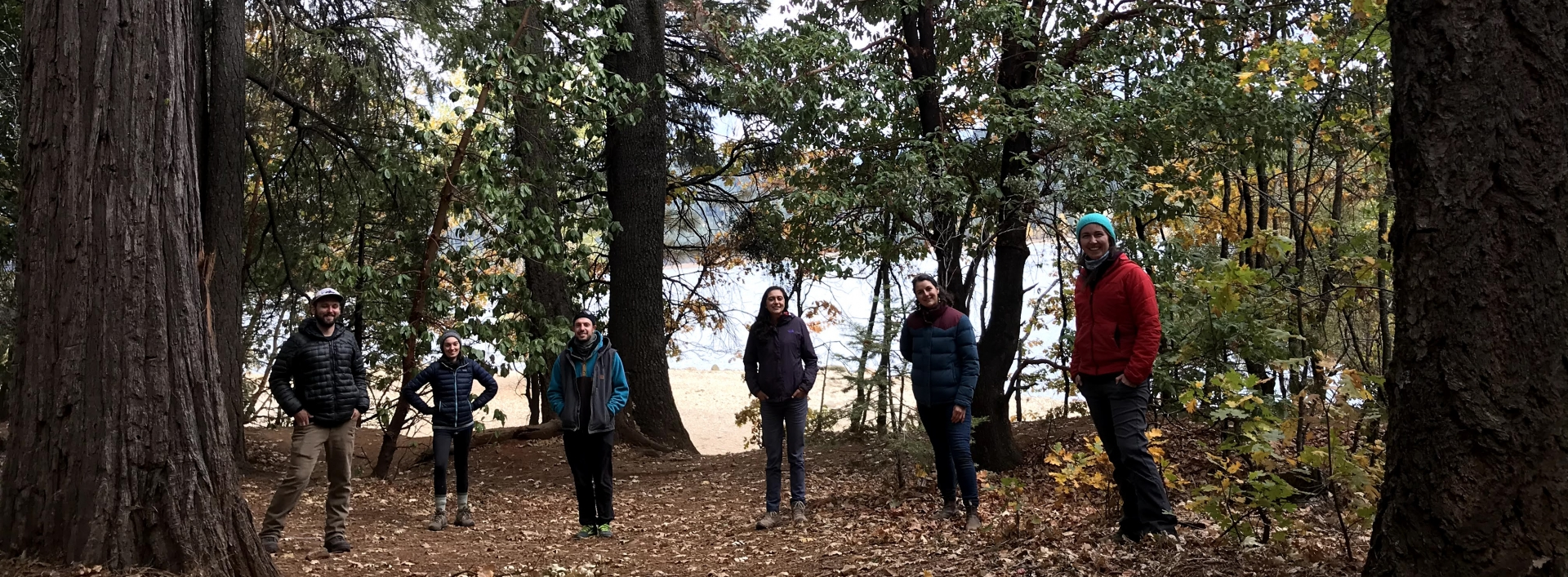A group of 6 students stands in a clearing in the woods