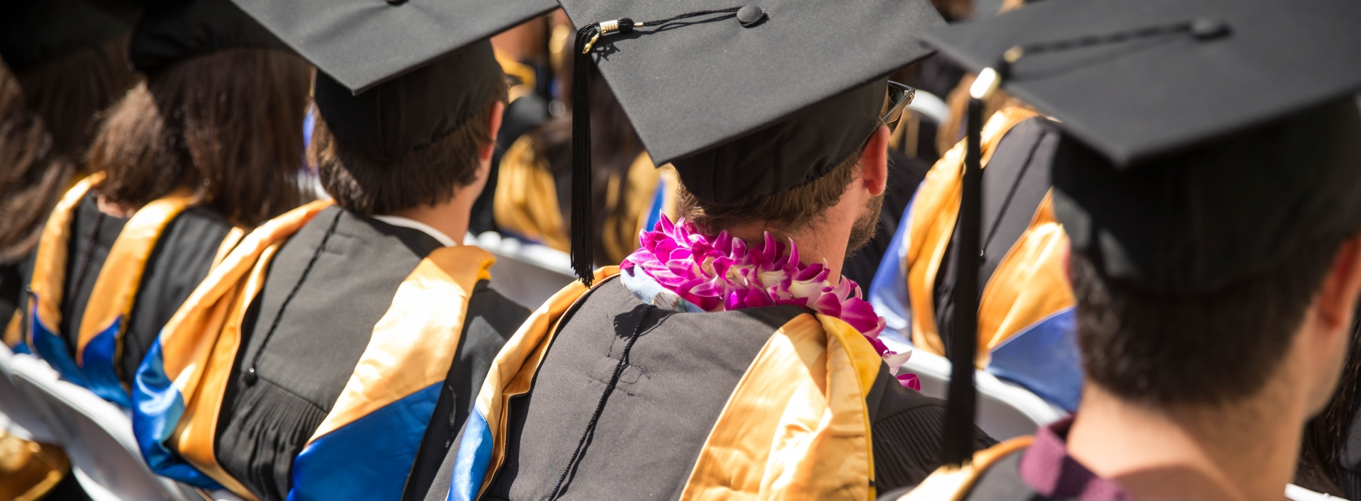 Graduates in caps are seen from behind at commencement