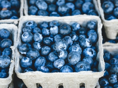 Fresh blueberries in a carton.