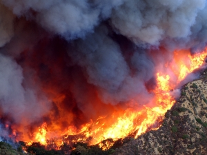 Aerial view of wildfire and smoke