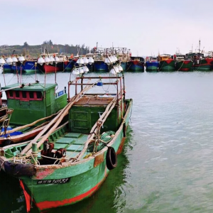 Rustic fishing boats in a harbor.